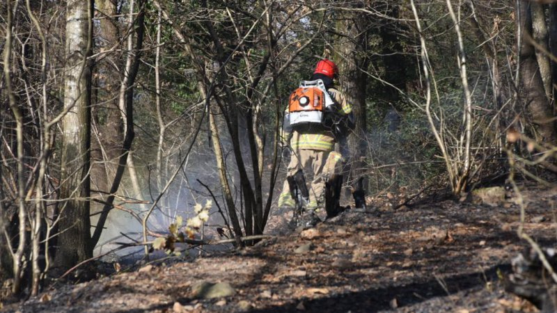 Incendio boschivo a Brusino Arsizio